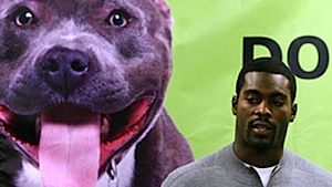 281a914f What does Michael Vick want for Christmas? A dog, apparently.